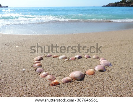 Shells at the beach, selective focus on the foreground. Sand and sea shell heart.           - stock photo