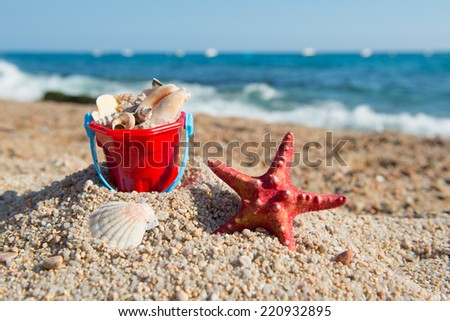 Shells in red plastic bucket at the beach - stock photo