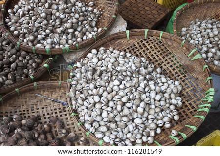 Shells on a market in Pnom Penh, Cambodia - stock photo