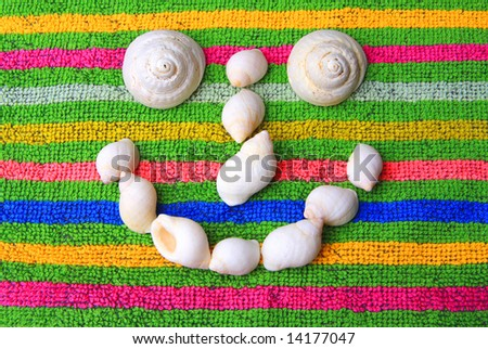 shells on terry-cloth