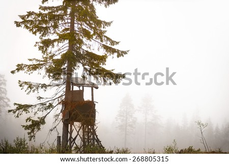 Shelter built for hunting moose in autumn in clearing of scandinavian forest on foggy day - stock photo
