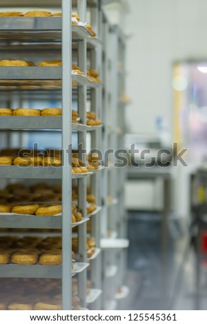 Shelves with baked donuts in fast food restaurant in huge store
