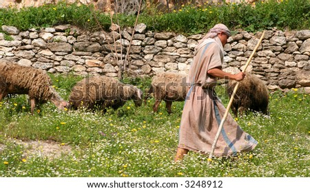Shepherd and Flock in Israel - stock photo