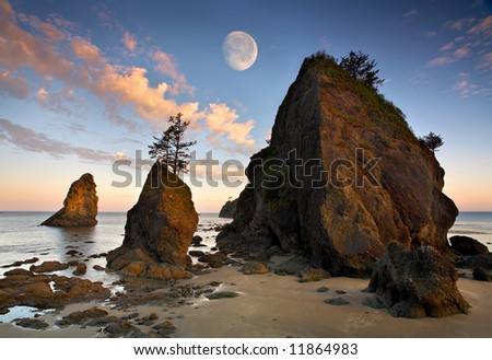 Shi Shi Beach - stock photo