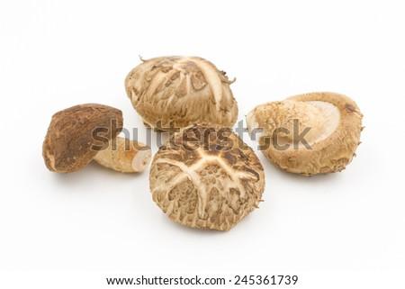 Shiitake mushroom on the White background - stock photo