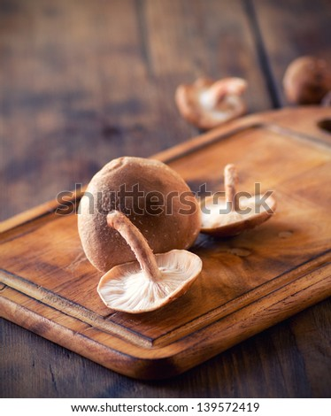 shiitake mushrooms on a wooden cutting board - stock photo