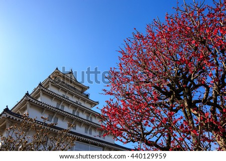 Shimabara castle and Japanese apricot