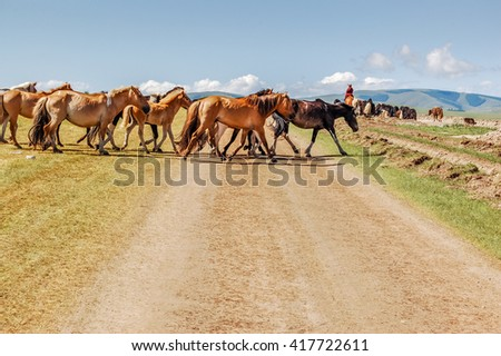 Shine-Ider District, Mongolia -  July 22, 2010: Mongolian horses herded by horseback nomad cross dirt track on steppe in Khovsgol province in northern Mongolia.