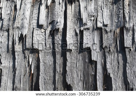 Shingles. Texture of old wooden plates.  - stock photo