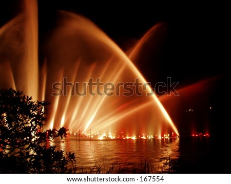 Shining fountain in the night