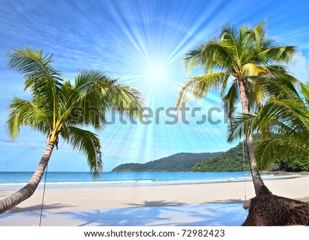 Shining sun on nice beach with palm trees - stock photo