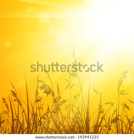 Shiny Abstract Summer Meadow With Grass