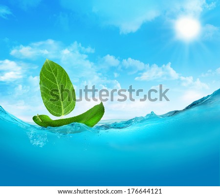 Ship made of leaves. - stock photo