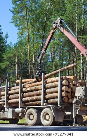 Shipping timber. Loading felled trees in the timber crane. - stock photo