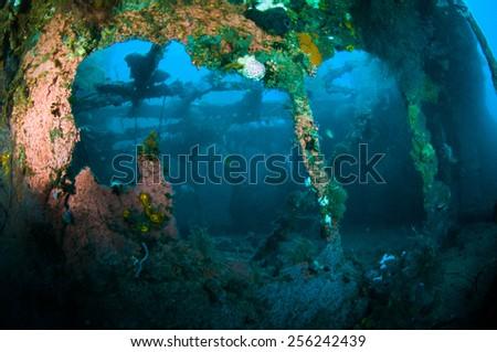 shipwreck bunaken sulawesi indonesia underwater photo - stock photo