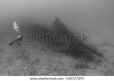 Shipwreck of the RMS Rhone, British Virgin Islands