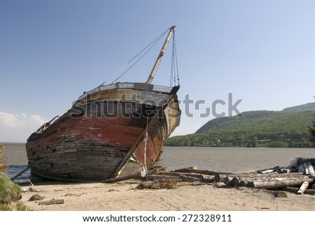 Shipwreck on a Beach with Drift Wood - stock photo
