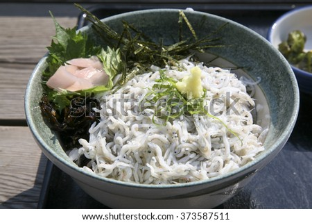 Shirasudon, Japanese food - stock photo
