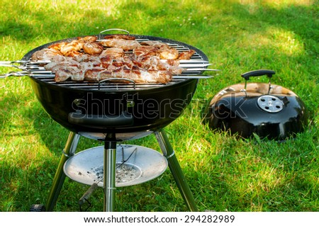 shish kebab in the chargrill - stock photo