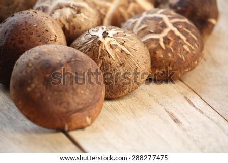 Shitake mushrooms on wood - stock photo