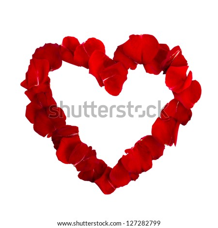 Shoot of beautiful heart of red rose petals isolated on white - stock photo
