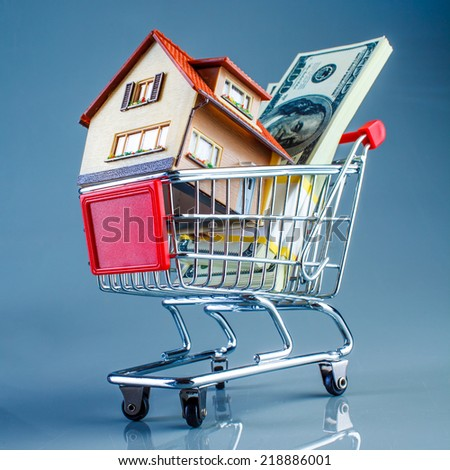 shopping cart and house on a blue background - stock photo