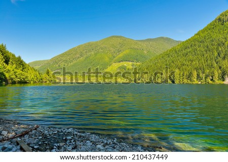 Shore and reflections of a Coniferous Forest on a Wilderness Lake in Vancouver Island, BC, Canada - stock photo