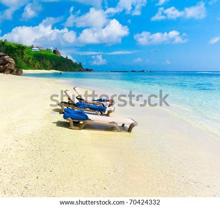 Shore Bay Palms - stock photo