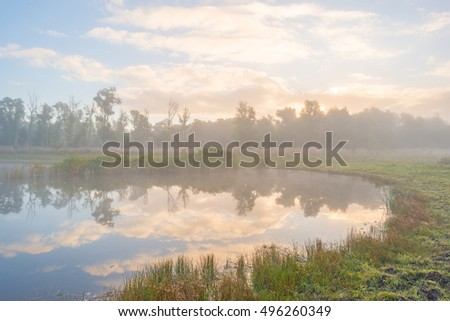 Shore of a foggy lake at sunrise in autumn