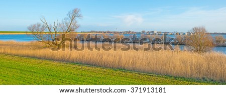 Shore of a lake below a blue cloudy sky in winter