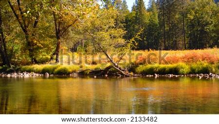 Shore of Merced River in Yosemite National Park in Autumn splendor - stock photo