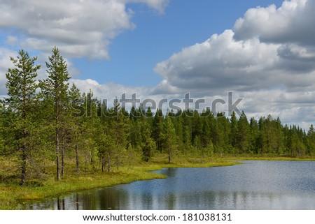 Shore of Northern lake. Finnish Lapland - stock photo