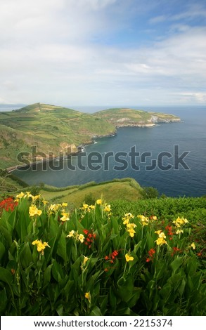 Shore View - stock photo