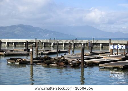 Shoreline along San Francisco looking towards piers 39 and Fisherman's Wharf - stock photo