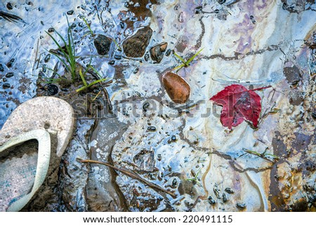 Shoreline contaminated with garbage and hazardous toxic chemical gasoline waste.  A discarded child's sandal iconic of the human carbon footprint, and a red maple leaf rests beside the sandal.   - stock photo