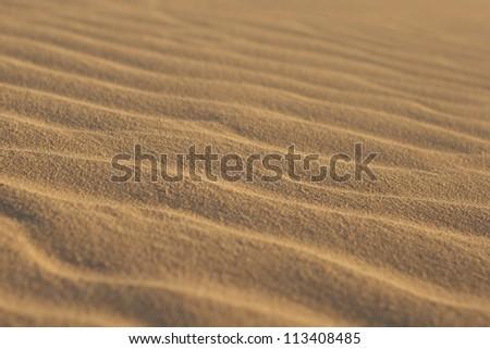 Short depth of field photo of sand ripples - stock photo