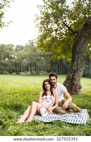 Shot of a happy young couple having romantic time and enjoying a summer picnic. Natural light, selective focus.