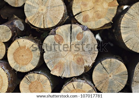 Shot of a pile of cut tree trunks ideal for backgrounds and textures. Pile of wooden logs - stock photo
