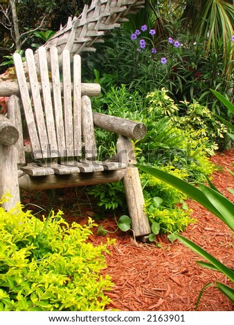 Shot of a wood chair surrounded by folige and palm tree. - stock photo