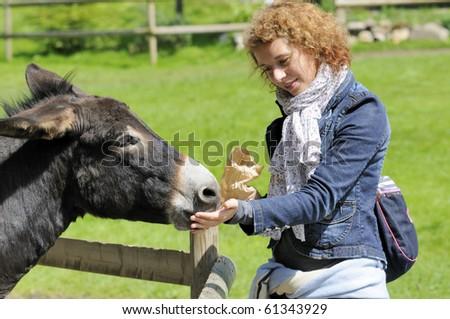 Shot of beautiful girl feeding donkey at zoo - stock photo