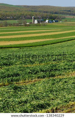 Shot of fields in Lancaster County showing the contour technique - stock photo