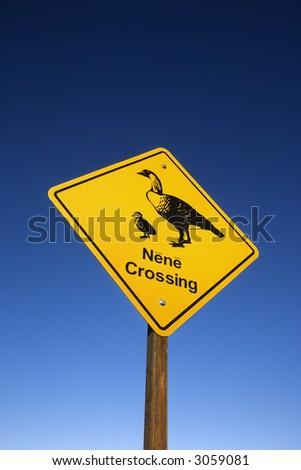 "Shot of ""Nene Crossing"" road sign in Haleakala National Park, Maui, Hawaii. - stock photo"