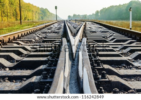 shot of railroad crossroads close up in autumn - stock photo