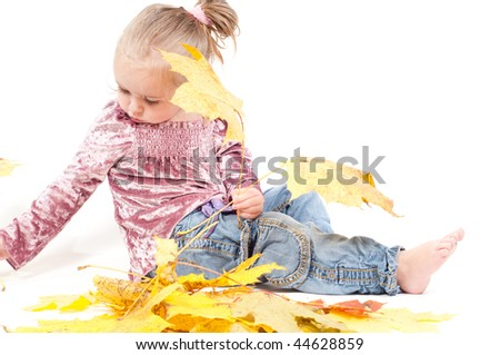 Shot of toddler playing with muple leaves in studio
