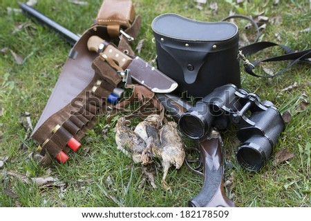 Shotgan and partridges - stock photo