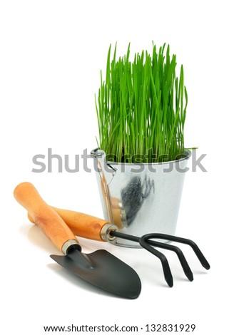 Shovel, aluminum bucket with grass, rake, garden tools isolated on white - stock photo