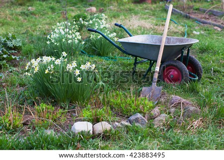 Shovel and the cart on a garden site with flowers
