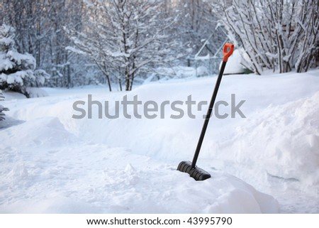 Shovel in snow - stock photo