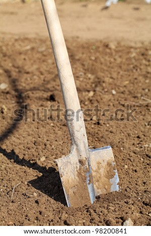 Shovel in the Ground stock - stock photo