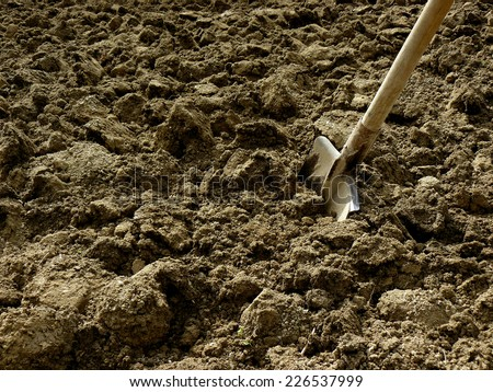 shovel in the ploughed ground - stock photo